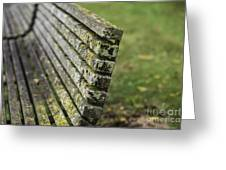Mossy Bench Greeting Card