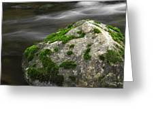 Mossy Boulder In Mountain Stream Greeting Card