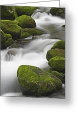 Mossy Boulders Greeting Card