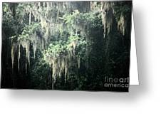 Mossy Dream Greeting Card