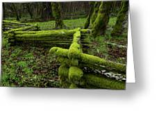 Mossy Fence 4 Greeting Card