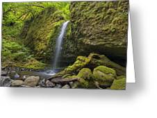 Mossy Grotto Falls In Summer Greeting Card