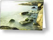 Mossy Rocks On Shoreline Greeting Card
