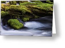 Mossy Rocks Oregon 3 Greeting Card