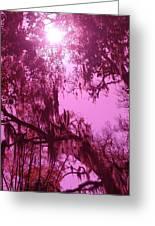 Mossy Splendor Greeting Card