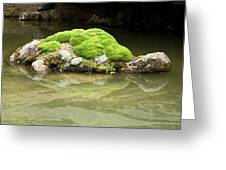 Mossy Turtle Rock Greeting Card