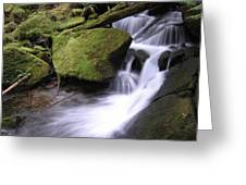 Mossy Waterfall Landscape Greeting Card