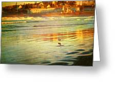 Mostly Maine Xii Greeting Card