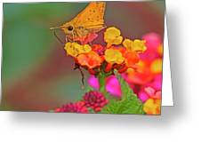 Moth #2 Greeting Card