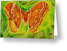 Exuberant Coral Moth Greeting Card