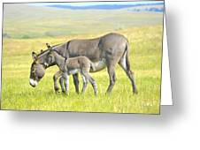 Mother And Baby Burro Greeting Card