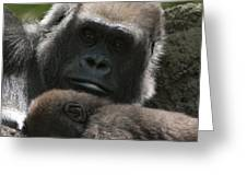 Mother And Child Gorillas1 Greeting Card