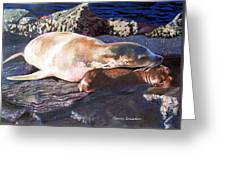 Mother And Child Sea Lion Greeting Card