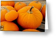 Mother And Daughter Pumpkins Greeting Card