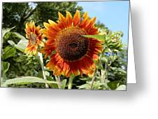 Mother And Daughter Sunflowers Greeting Card