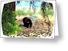 Mother Bear Greeting Card