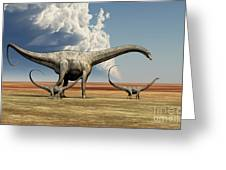 Mother Diplodocus Dinosaur Walks Greeting Card