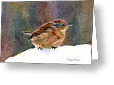 Mother Wren Greeting Card