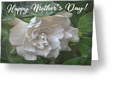 Mother's Day Gardenia Greeting Card