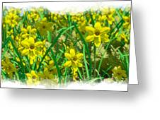 Mound Of Flowers... Greeting Card