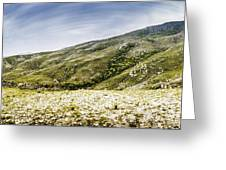 Mount Agnew Landscape In Tasmania Greeting Card