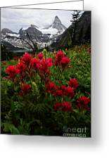 Mount Assiniboine Canada 11 Greeting Card