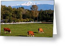Mount Baker From Langley Bc Greeting Card