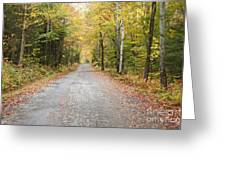 Mount Clinton Road - Beans Grant New Hampshire Greeting Card