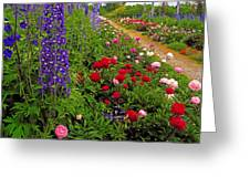 Mount Congreve Gardens, Co Waterford Greeting Card