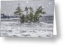 Mount Desert Narrows Snowscape Greeting Card