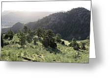 Mount Galbraith In Spring Greeting Card