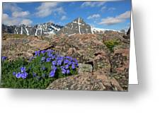 Mount Holy Cross With Wildflowers 2 Greeting Card