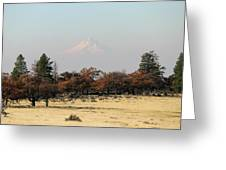 Mount Hood Over The Flats Greeting Card