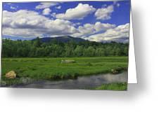 Mount Katahdin Summer Greeting Card