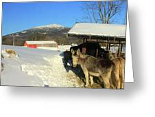 Mount Monadnock From East Hill Farm Greeting Card