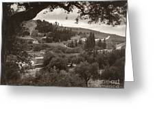 Mount Of Olives Greeting Card
