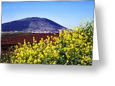 Mount Of Transfiguration Greeting Card