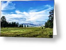 Mount Pagosa Meadow Greeting Card