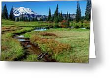 Mount Rainier- Upper Tipsoo Lake Greeting Card