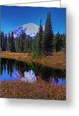 Mount Rainier And Tipsoo Lake Greeting Card