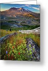 Mount Saint Helens Greeting Card