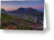 Mount St Helens Spring Colors Greeting Card