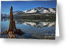 Mount Tallac And Fallen Leaf Lake Greeting Card
