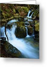 Mount Tam Waterfall Greeting Card