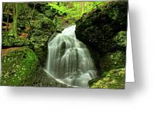 Mount Toby Roaring Falls Greeting Card