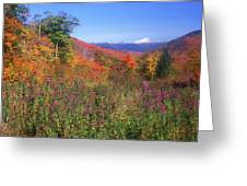 Mount Washingon Flowers Foliage Greeting Card
