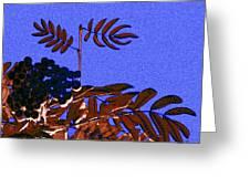 Mountain Ash Design Greeting Card