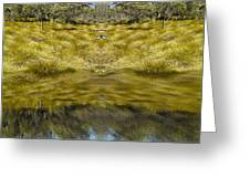 Mountain Button Grass Greeting Card