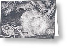 Mountain Cottontail Greeting Card