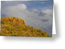 Mountain Guardians Greeting Card